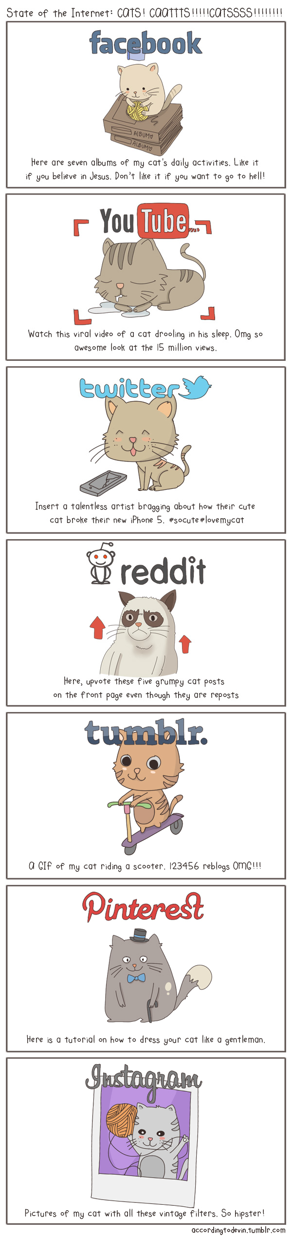 The State of Internet Explained With Cats